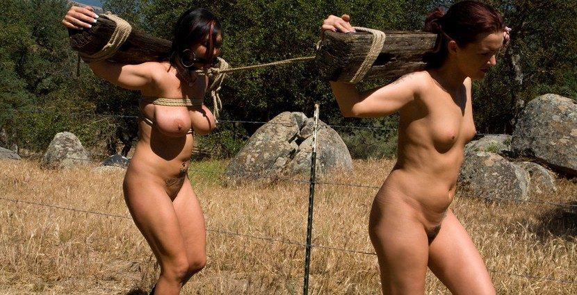 Thetrainingofo Com The Training Of Sara Faye And Lobo Sara